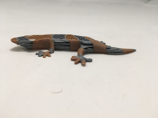 First MMU Print of Lizard